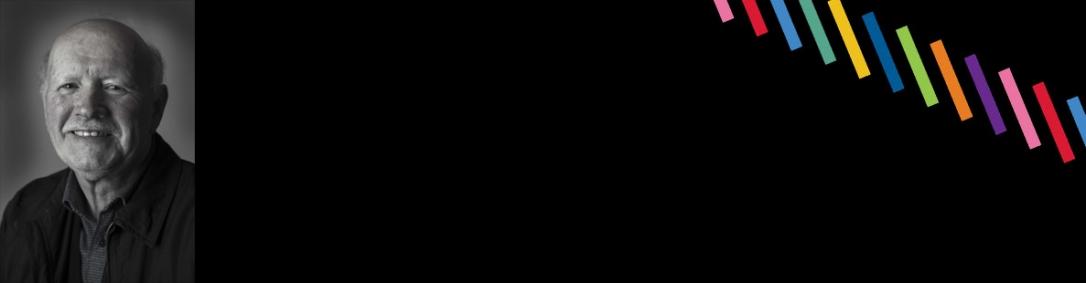 Domleo Banner